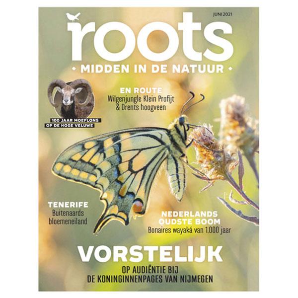 Roots editie 06 – 2021