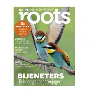 Roots editie 7