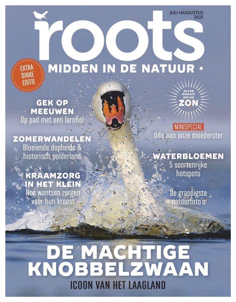 Roots editie 7/8 – 2021