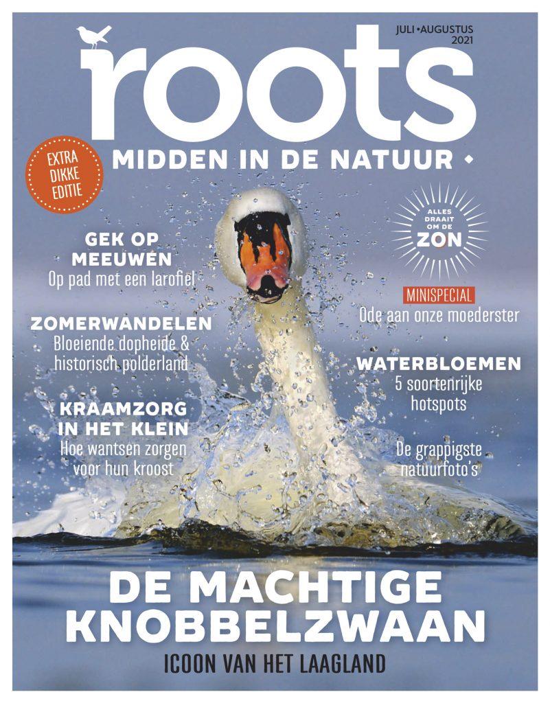 Roots-editie-7/8-20211