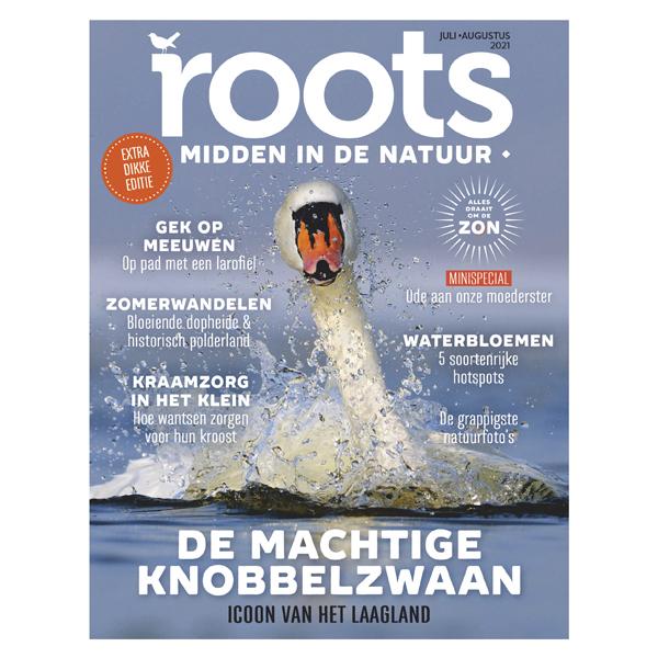 Roots editie 7/8 - 2021