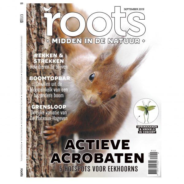 Roots-editie-9-2019