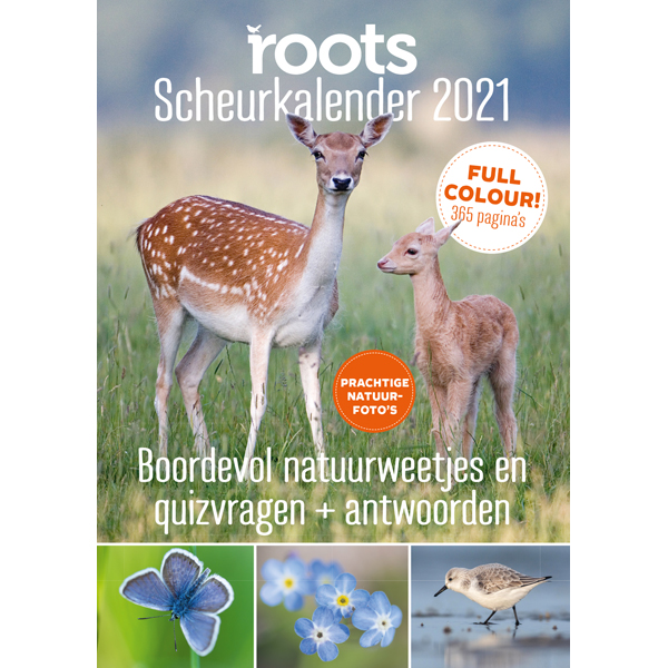 Roots 2021