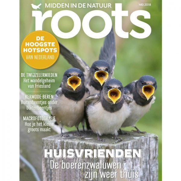 Roots5_855x900webshop