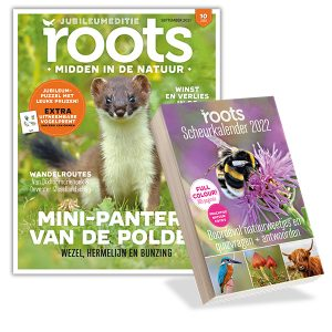Aanbieding Roots scheurkalender 2022