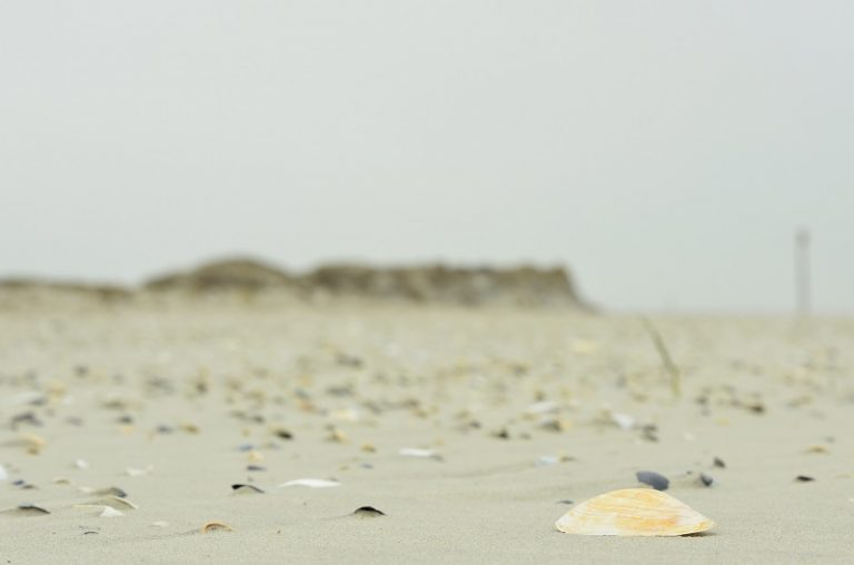9 onbewoonde eilanden in de Waddenzee