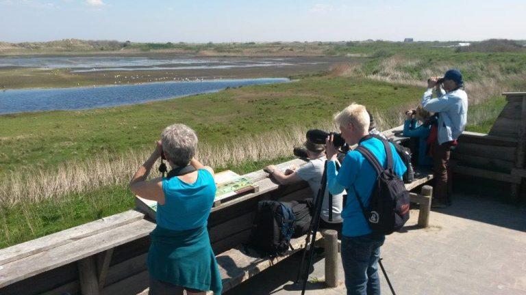 Blog over het Wadden Vogelfestival