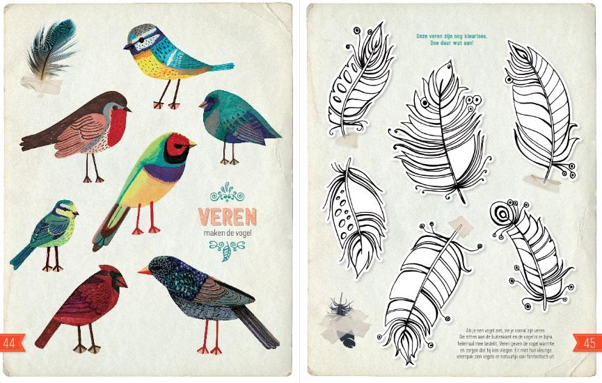 Kleurplaten Over Vogels.Tip Voor De Kerstvakantie Doe Boek Vogels Rootsmagazine Nl
