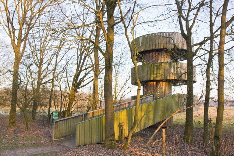 Uitkijktoren De Wildtoren: zicht op edelherten en zilverreigers