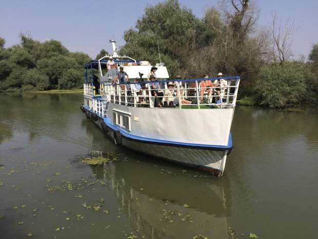 Vogels kijken op de Donau