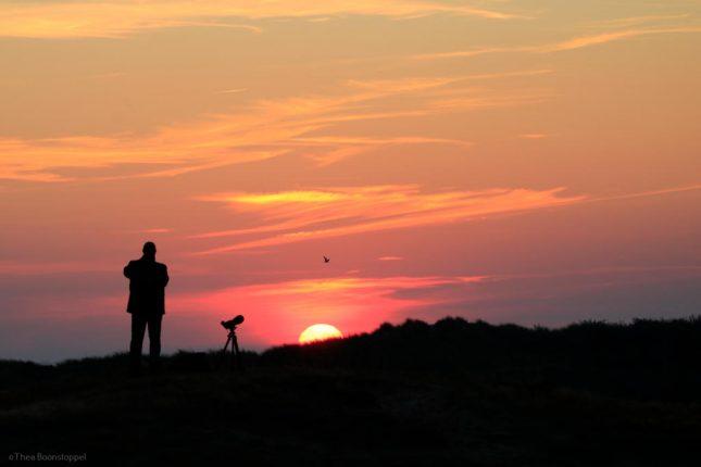 vogelen-vanaf-zonsopkomst-thea-boonstoppel