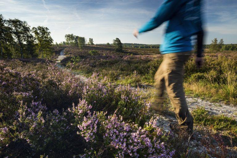 Wandelen wordt populairder, maar 7 km is voldoende