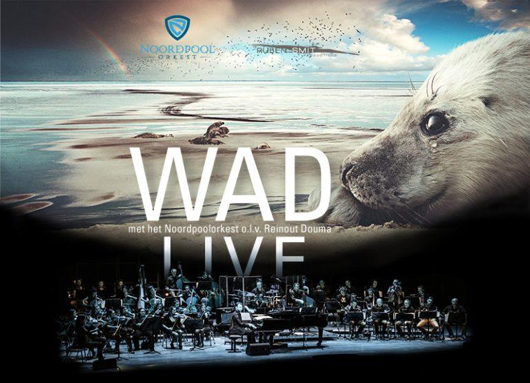 WADfilm live in de theaters met orkest!