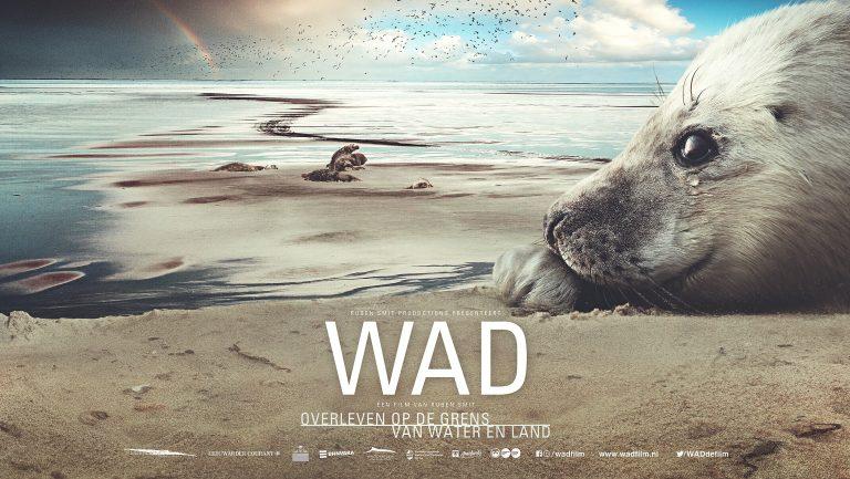 Wad, de nieuwe film van Ruben Smit, gaat in première