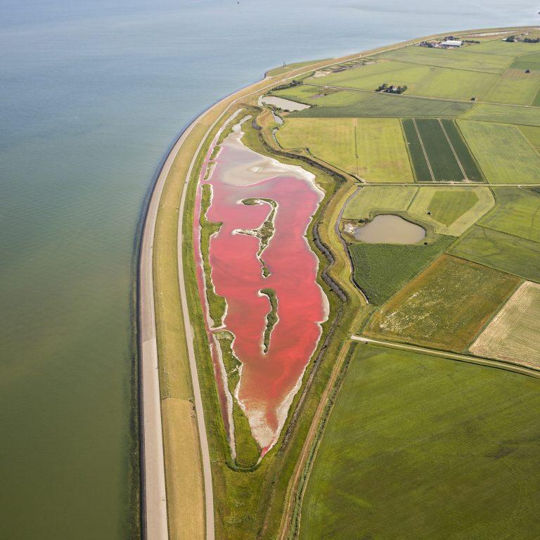 Wagejot op Texel kleurt roze