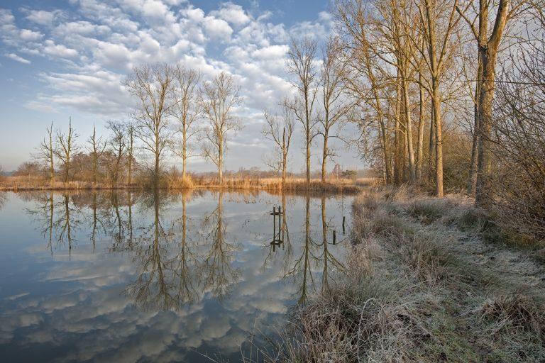 De Wijers: wandelen door het land van 1.001 vijvers