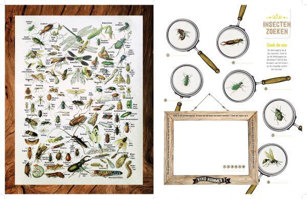 doe-boek insecten 1