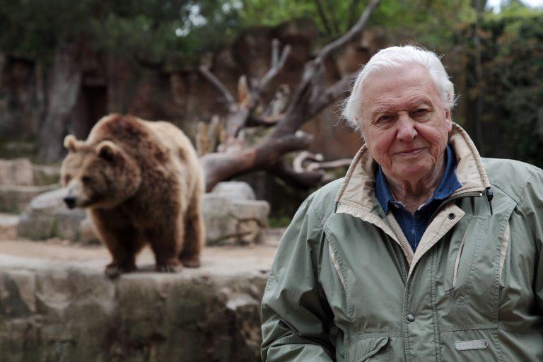 David Attenborough terug op tv