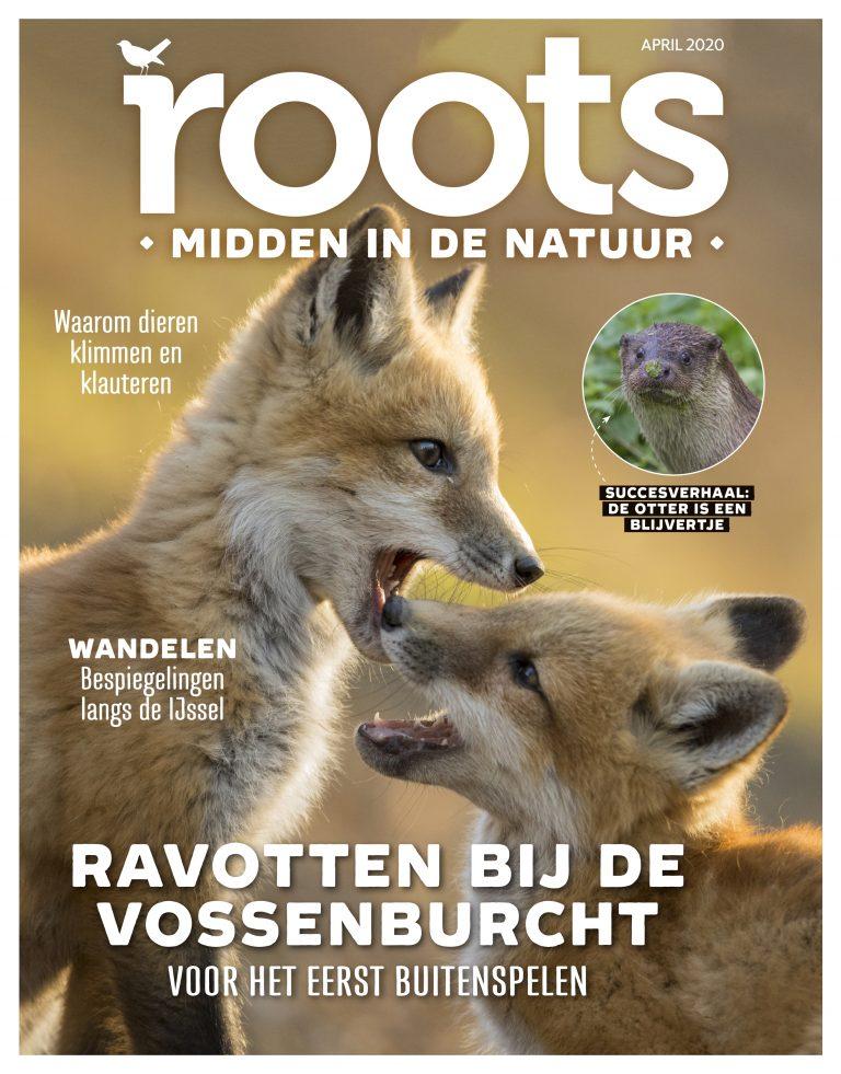 Roots editie 4 – 2020