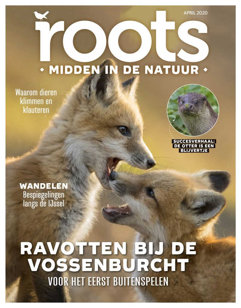 cover-ROOTS-APRIL-2020