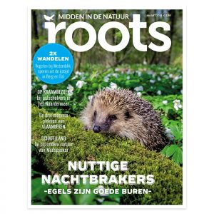 cover-Roots-3