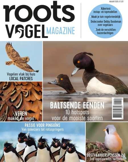 cover-VM-najaar-2020