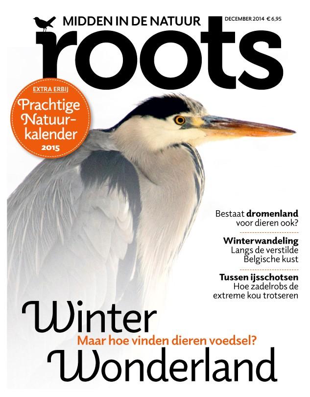 cover december