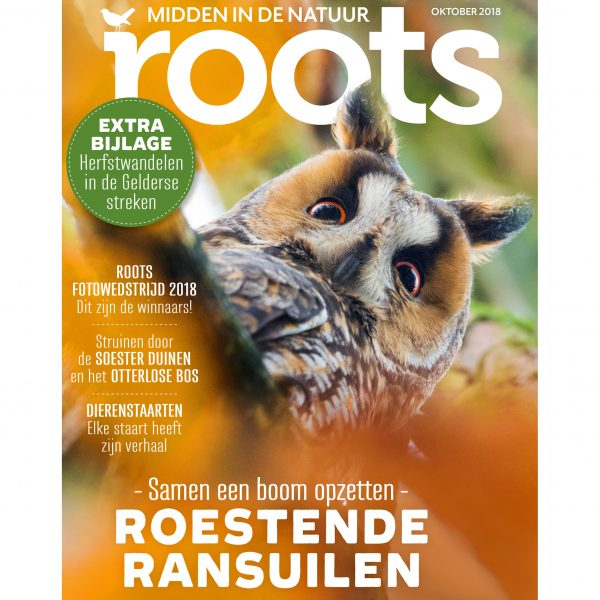 cover-roots-101