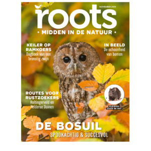 cover-roots-111