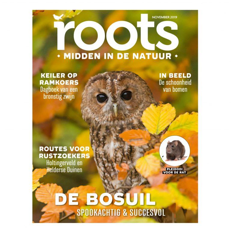 Roots editie 11 – 2019