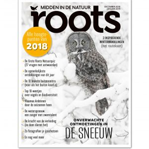cover-roots-121