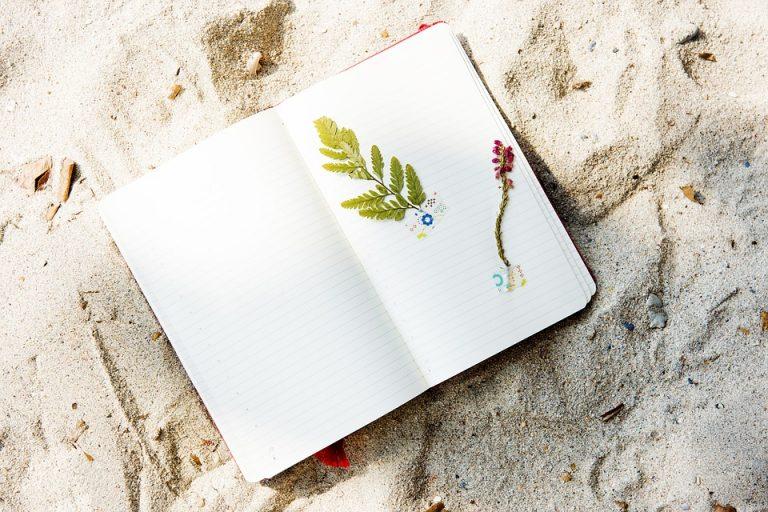 Vergroot je natuurkennis: houd een natuurlogboek bij