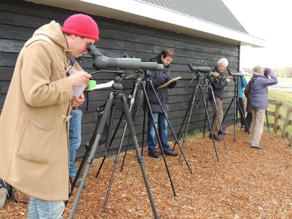 De testers en vogelaars in actie