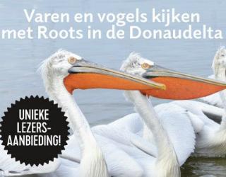 Roots-vogelreis naar de Donau