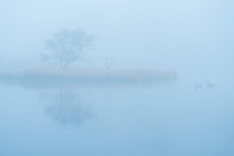 6 fantastische foto's die stilte en stilstand ademen