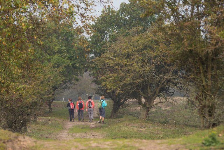 Roots-lezersaanbieding: struinen met boswachter Gerard Scholten
