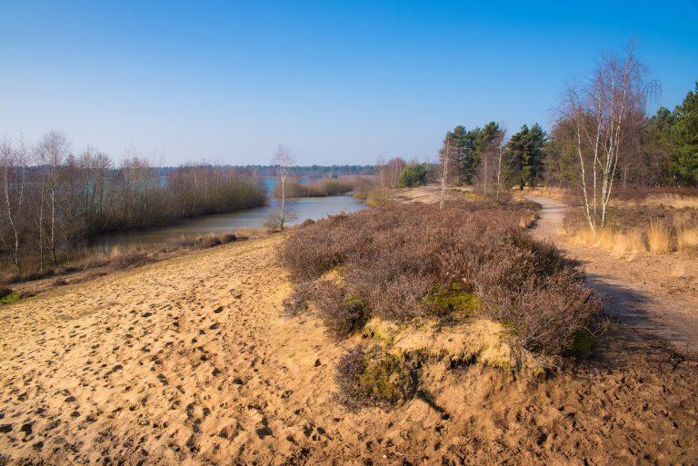 Roots-arrangement: wandelen & slapen in De Maasduinen