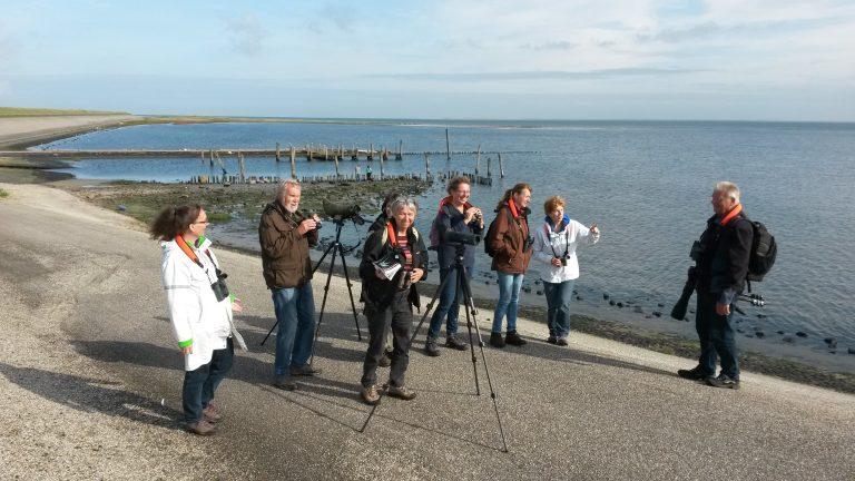Roots vogelkijkdag op Texel een succes