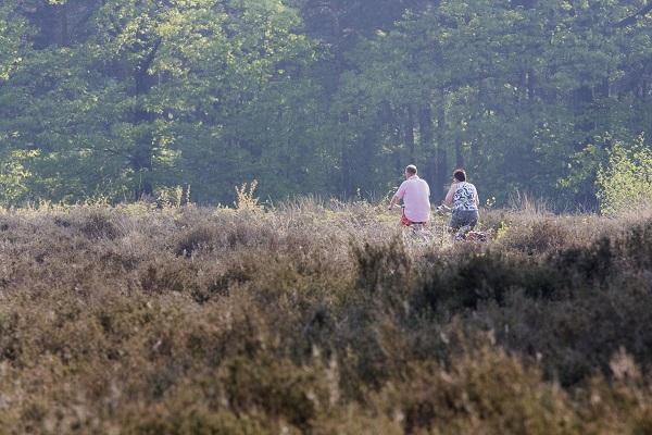 Twee eenzame fietsers op een doordeweekse dag op de heide.