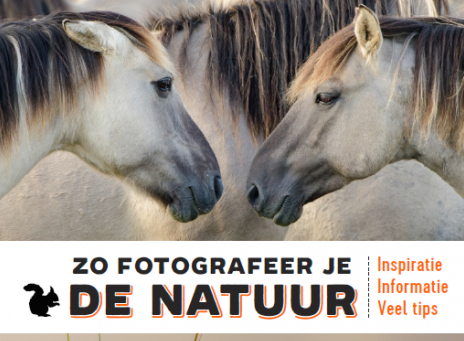 Rootsboek Zo fotografeer je de natuur