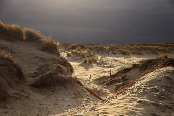 In de duinen