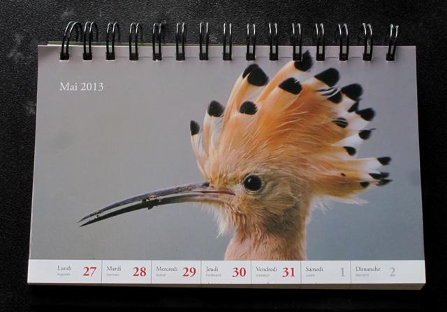 hop kalender