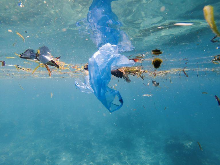 Wereld Oceanen Dag: hoeveel kilo plastic belandt er in zee?
