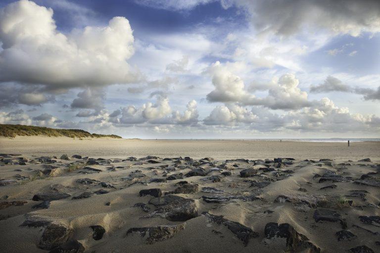 Roots lezersactie: filmfestival Vlieland met de mooiste natuurfilms