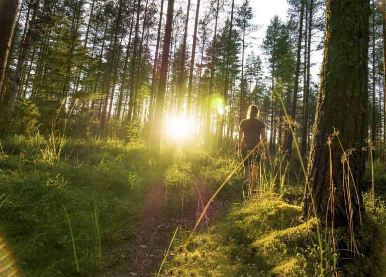 Wat een vraag: hoe voorkom je een zonnesteek tijdens het wandelen?