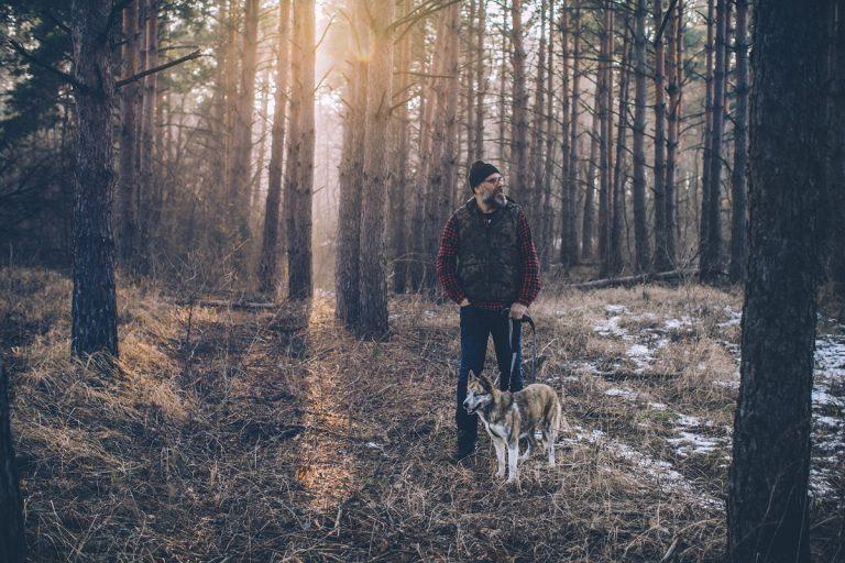 Natuurwandelen met de hond (aan de lijn)