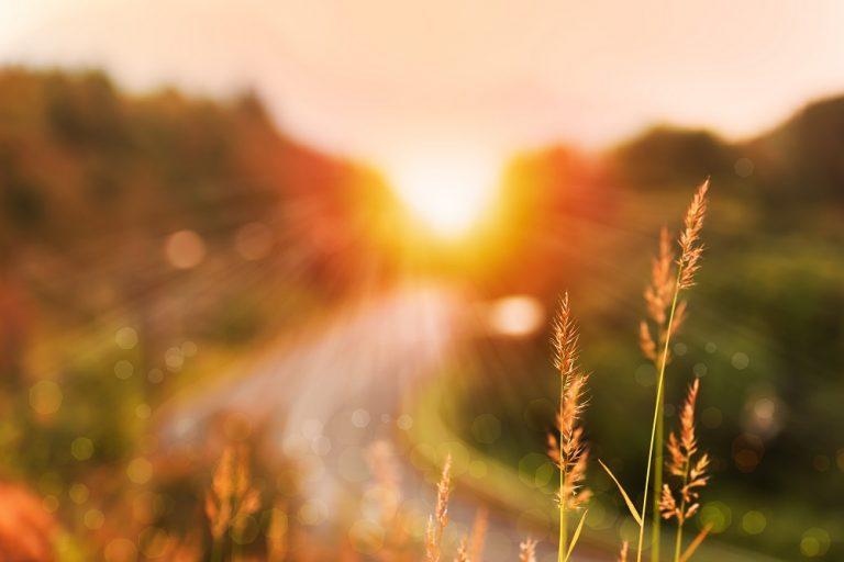 Getest: outdoorspullen die het buitenleven net iets fijner maken