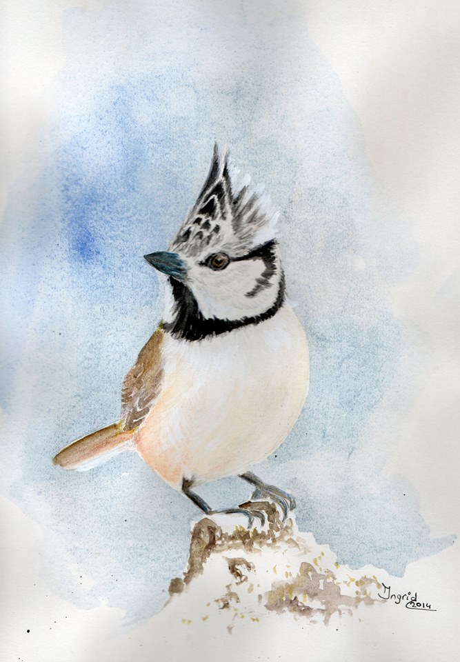 Ingrid Vaane maakte deze aquarel naar aanleiding van de Roots-cover van januari