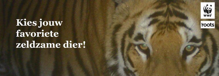Doe mee aan de Roots-WNF verkiezing en kies je favoriete zeldzame dier!