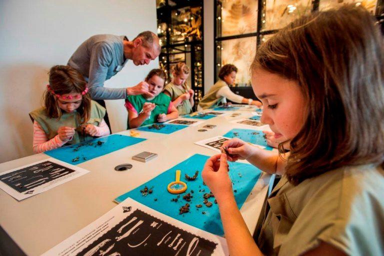 Kinderboekenweek: gratis naar musea